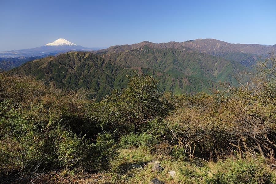 東丹沢の山並みと富士山