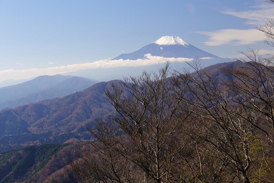 畦ヶ丸近辺からの富士