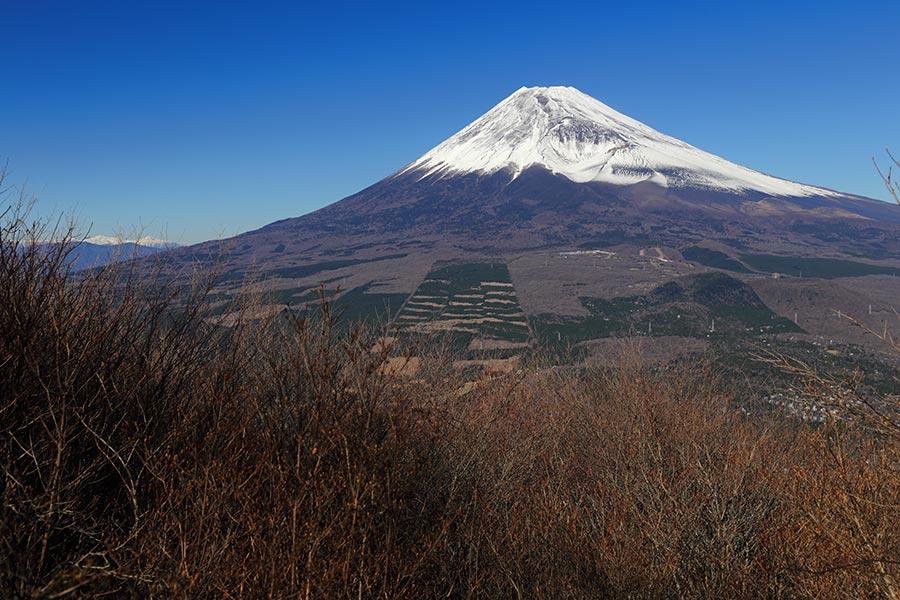 富士山(富士見台から)