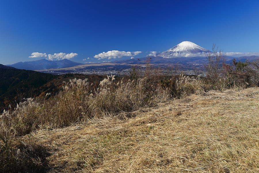 矢倉岳からの富士