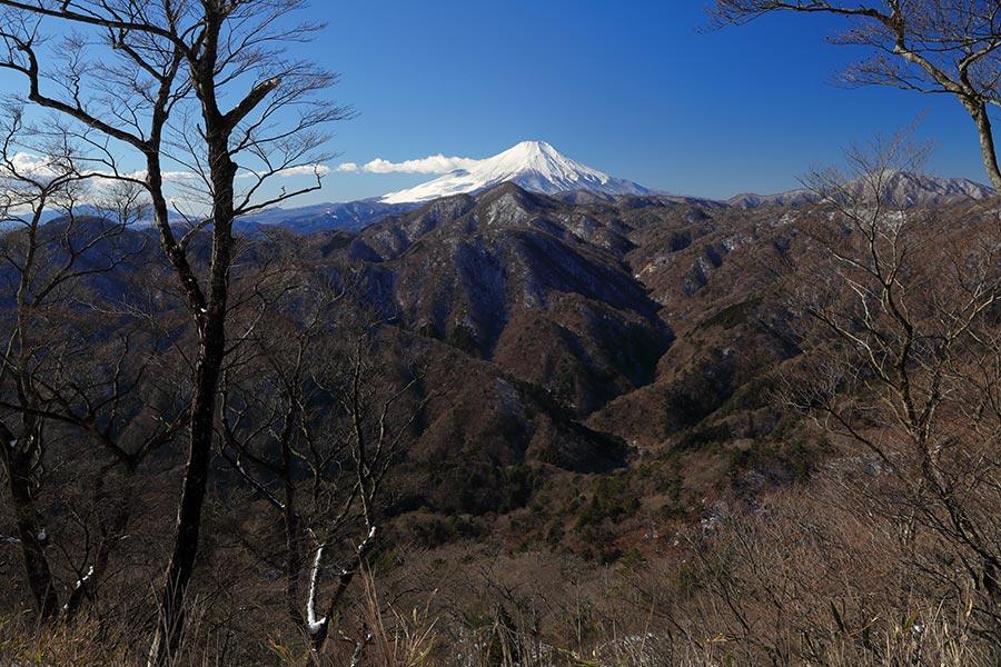 畦ヶ丸と富士山