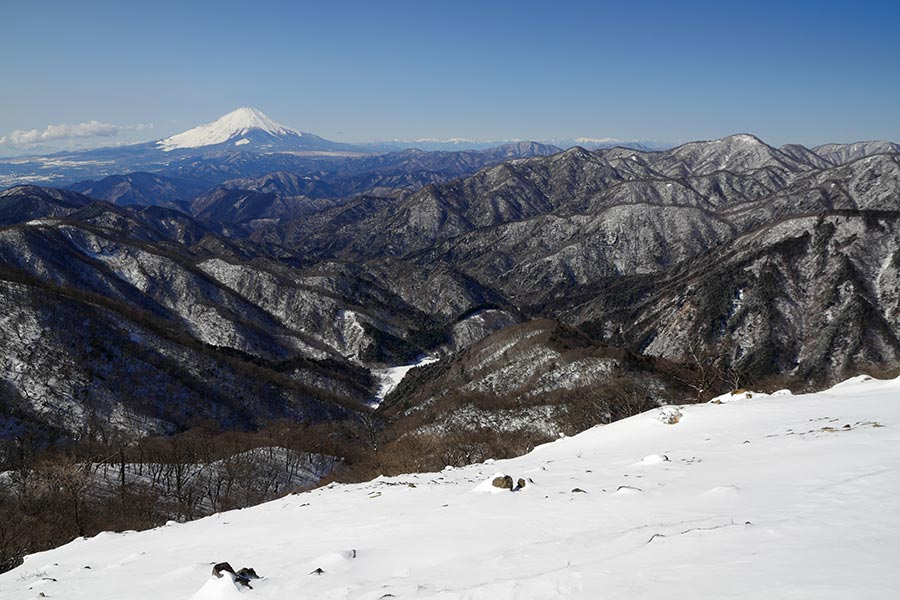 塔ノ岳からの富士