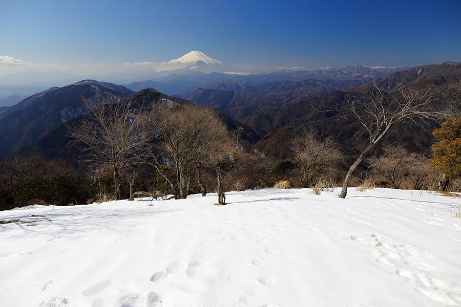 鍋割山から富士山と南アルプス