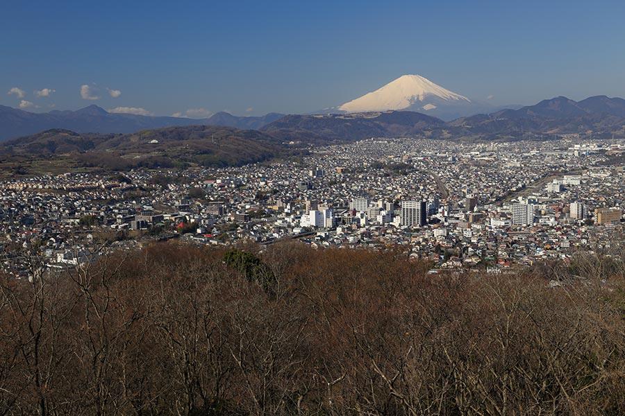 権現山からの富士