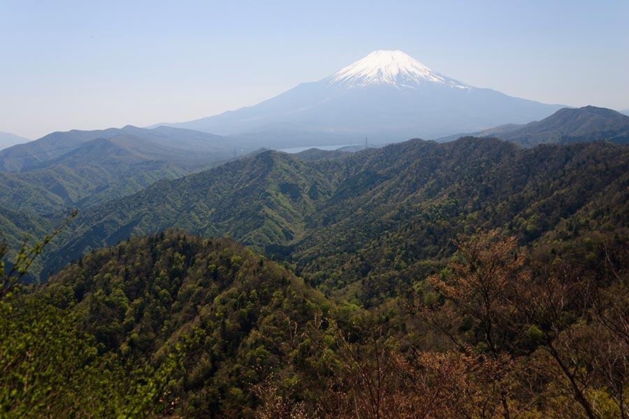 菰釣山からの富士
