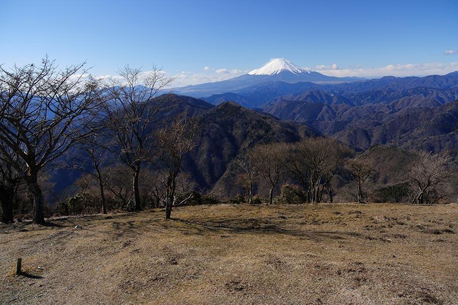 鍋割山からの富士